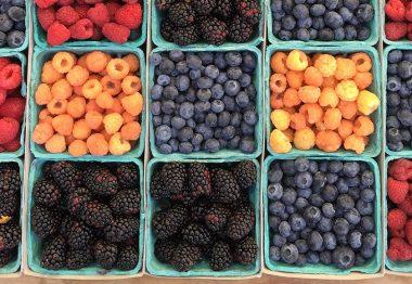 ¿Cuáles son los principales sabores de frutas en el vino?