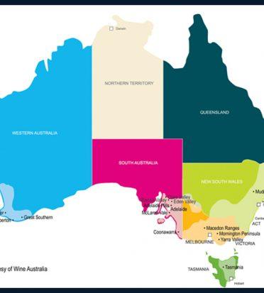 Vinos australianos: guía para principiantes