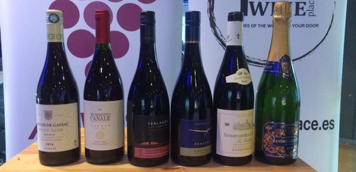 Uva Pinot Noir, el Picasso del mundo de los vinos