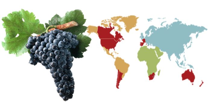 Tempranillo from Around the World
