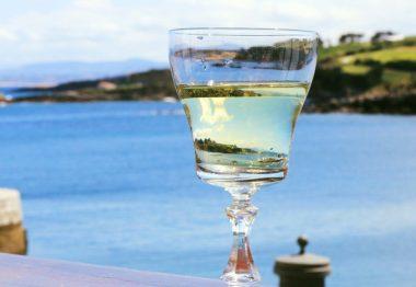 Todo lo que necesitas saber sobre el Sauvignon Blanc