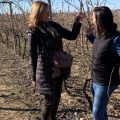 Enoturismo | Blog de vino