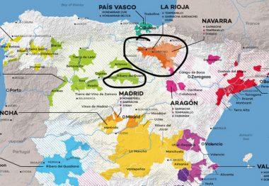 Las diferencias entre Rioja y Ribera del Duero
