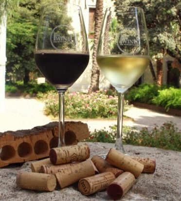 Essential Wine Tips