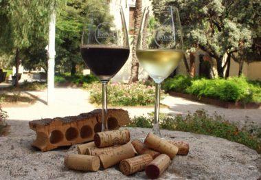 Trucos básicos para elegir un vino