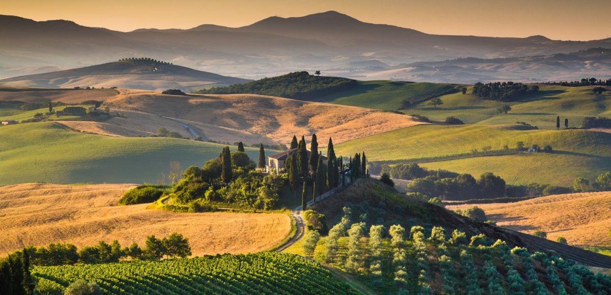 Los Vinos de la Toscana