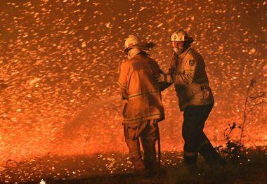 Los incendios forestales en Australia